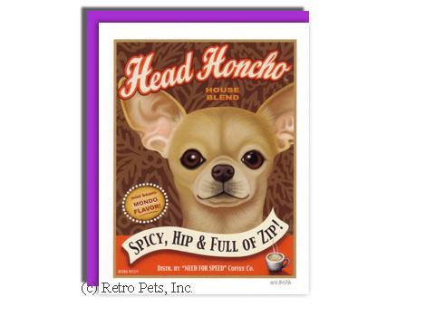 Head Honcho Chihuahua