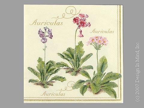 Auriculus Cream napkin