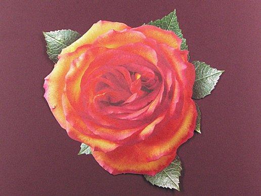 Parchment leaves and roses add elegance to food service.