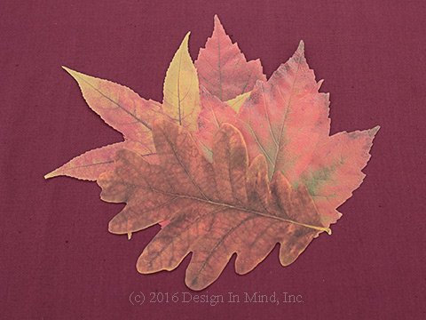 Parchment Fall Leaves
