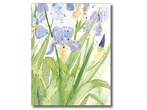 Iris Notecards