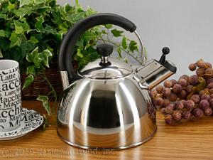Stovetop stainless steel kettles... efficient and easy to use.